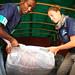 Horn of Africa 2011 famine