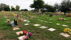 Jardín de la Esperanza 02475 (Omar Omar) Tags: grandmasdead grandmaisdead death muerte funeral cementerio cemetery entierro burial mexicali bajacalifornia bassecalifornie mexico méxico mexque desert desierto calor caloron cachanilla jardindelaesperanza america