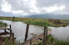 Serenity (jesse.mentha) Tags: lake asia myanmar inle southeast