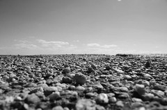 Down By The Sea (sniderscion) Tags: urban bw white black scott concrete bay pier nikon day bright pov decay g low perspective sunny ground pebbles baltimore canadian crumble nikkor 18200 chesapeake snider remnant 3556 sniderscion d7000 nikkor182003556g