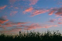 Fuji Superia 400 (jjmacaodhagain) Tags: sunset ohio moon film clouds analog 35mm canon photography exposure fuji superia 35mmfilm 400 analogue af nocrop noediting fujisuperia400 filmphotography manualexposure sooc straightoutofcamera labscans thedarkroomcom
