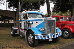 Pete single drive (RyanP77) Tags: show wheel truck cattle dump semi chrome rig pete heavy stockton tanker peterbilt 389 359 hauler cabover 388 379 352 daycab