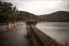 healesville-6775-ps-w by pw-pix -