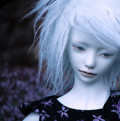 Lavender (tarengil) Tags: detail nature garden doll head sd luv bjd abjd outing dollmore zaoll