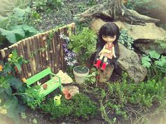 DaD Nov.Day2:The Secret Garden