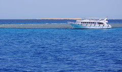 The Gota Abu Ramada coral reef (Andrey Velichko) Tags: sea coral ship desert redsea ships egypt diving snorkeling reef bots hurghada bot coralreef