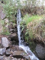 Colca Canyon-37