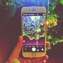 iPhone6 ก๊อปจีนแดง เกรดA+