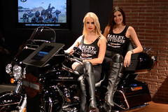EICMA 2014 () Tags: italy del photography photo italia novembre foto photographer photos milano wheels motorcycles exhibition event evento moto motorcycle fotografia stefano fotografo fiera motori ciclo esposizione rho 2014 trucco motocicletta motociclismo mondiale eicma motociclette motociclo 72 zush stefanotrucco