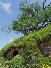 Tree above Bag End (totally fake)