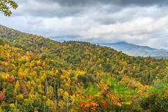 Blue Ridge Parkway, NC 10-13-2014 (Jerry's Wild Life) Tags: northcarolina fallfoliage blueridgeparkway smokymountains northcarolinalandscape blueridgeparkwaylandscape smokymountainslandscape