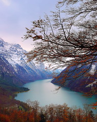 (Eric Goncalves) Tags: blue autumn trees light sunset sky lake color green ice nature water beautiful forest landscape golden switzerland landscapes frozen october view perspective peaceful edge autumnal treescape canonef2470mmf4lisusm canon6d ericgoncalves