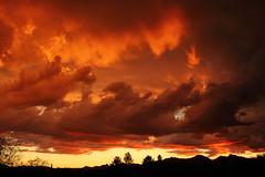Sunset 10 19 2014 #19 (Az Skies Photography) Tags: sunset arizona sky orange cloud sun black rio set skyline clouds canon skyscape eos rebel gold golden october salmon az rico 19 2014 arizonasky arizonasunset riorico rioricoaz t2i 101914 arizonaskyline canoneosrebelt2i eosrebelt2i arizonaskyscape october192014 10192014