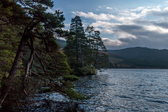 Loch (Ginger Snaps Photography) Tags: trees water canon eos scotland highland loch 70d