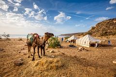 Maroc (jpmiss) Tags: ocean canon atlantic morocco maroc essaouira 6d atlantique jpmiss marrakechtensiftalhaouz