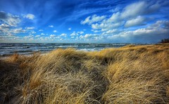 Grand Mere Dunes (mswan777) Tags: landscape beach dune grass sand cloud sky seascape shore outdoor nature lake michigan stevensville evening wind nikon d5100 sigma 1020mm water waves