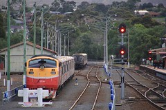 A66 is stabled in Bacchus Marsh over the weekend period (bukk05) Tags: a66 railpage:class=30 railpage:loco=a66 rpauvicaclass rpauvicaclassa66 aat22c2r emd12645e3b emd world explore export engine earth electromotivediesel railway railroad railpage rp3 rail railwaystation railwaystations train tracks tamron tamron16300 trains travel yard overcast rfr photograph photo passenger passengertrain loco locomotive horsepower hp flickr diesel dieselelectriclocomotive station australia autumn 2017 zoom canon60d canon clyde clydeengineering victoria vr victorianrailway vline victorianrailways broadgauge bg bacchusmarsh mainline signal shireofmoorabool aclass bulldog vlinepassenger