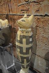 Tutankamón 014 (on_toi?) Tags: rey faraón egipto sarcófago momias momificacón museo tumba tutankamón