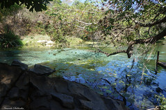 Fazenda da Pratinha - Chapada Diamantina/Ba - Brasil (AmandaSaldanha) Tags: nature natureza chapadadiamantina landscape paisagem spring primavera bahia brasil