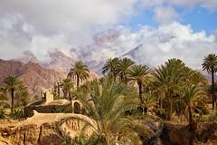 Good morning, Esfahak (ellaraumo) Tags: berg wüste desert oase esfahak iran