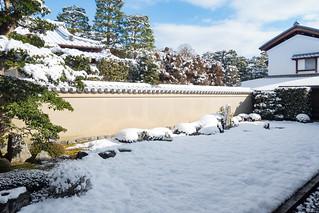 瑞峯院 - 大徳寺 / Zuihou-in Daitoku-ji Temple