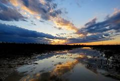 IMG_0081x (gzammarchi) Tags: italia paesaggio natura pianura campagna ravenna villanovadiravenna tramonto sole nuvola pozzanghera