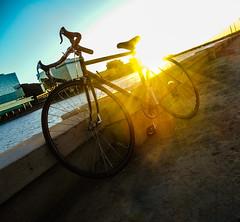 I will take you anywhere I go (Lilly_Martz11) Tags: tempe arizona lake sunset phoenix spring bike trek 1000 road