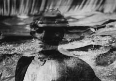 Flowing Through (skye-skye) Tags: water creek nature boy child kid young youth monochrome 35mm blackandwhite film sandwich sandwichnegative sandwichingnegatives art artist youthul youngster kids children teen teenager teens teenagers skye skyes skyesphoto skyesphotos sky skyephoto skyephotos 104 tenfour ok affirmative yes create creation creative beauty beautiful