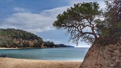 Vigilant de la platja -  Beach watches (Miquel Lleixà Mora) Tags: catalunya costabrava platja sea beach mar miquellleixà paisatge