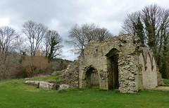 Vestiges du cloître de l'abbaye du Relec (Emma2922) Tags: ruine abbaye bretagne ruines pierre ruins