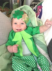 Top o' the morning to ya! Your first leprechaun sighting of the day! 🍀 (enovember) Tags: green leprechaun patrick patricks st day stpatricksday celebrate happy baby shamrock irisheyes whenirisheyesaresmilin potofgold luck rainbow lucky smile smiling irish patty glee polka dot