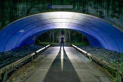 The Hermitage (stephenk1977) Tags: australia queensland qld brisbane grange hermitagegardens cycle path way tunnel bridge light painting art backlight backlit convoyl6 nikon d3300 shadow