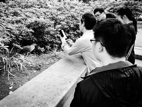 Snapshot, Taipei, Taiwan, 隨拍, 台北, 台灣