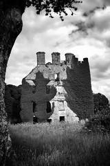 Ivy Castle Pt. 2 (Never Exceed Speed) Tags: menlocastle tree blackandwhite ivy abandonedbuilding galway ireland menloughcastle castle
