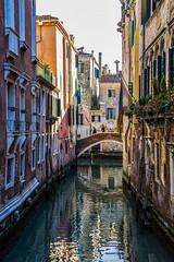 Venezia ... in verticale ... (miriam ulivi - OFF/ON) Tags: miriamulivi nikond7200 italia venezia venice canale ponte acqua riflessi reflections colors antichipalazzi ancientbuildings