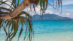 IMG_9858 (brian.b) Tags: philpipines palawan elnido bohol manila beach travel outdoor nature vacation pacific ocean