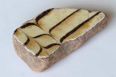 Staffordshire combed slipware (Arkle1) Tags: macromondays glaze