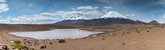 Pullapullane panorama (Andres Puiggros) Tags: pullapullane pano panorama lauca landscape volcan volcano andes mountain parinacota payachata pomerape nikon d500
