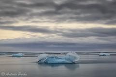 Blue Dog (Antonio Puche) Tags: antoniopuche paisaje landscape seascape perroazul bluedog iceberg ice islandia iceland lagunajökursarlón jökursarlón atardecer sunset nikon nikon247028 paisajedemar paisajedecosta blue azul