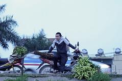 _DSC6918 (ngocnta.1311) Tags: flower while lily flowermarket vietnamflower