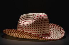 365.286 - Straw Hat (Justin Spradlin) Tags: cactus hat blackbackground grid sigma ocf 365 1770 2014 strobist d7000 sb700 cactusv6