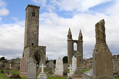 St. Andrews (CarloAlessioCozzolino) Tags: cemetery scotland standrews cimitero cattedrale scozia standrewscathedral