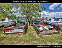 Stuck Trucks (Stephen Kinna Photography) Tags: auto old summer canada west tree cars abandoned up grass car neglect yard rural truck lost photo jj nikon rust decay neglected engine rusty ab utility pickup ute abandon forgotten alberta rusted western damage tray trucks parked junkyard pick 1970s wreck damaged crusty gmc wrecked regional decayed decaying wrecks patina wrecking generalmotors wrecker wreckers