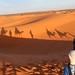 Sunrise Dunes of Merzouga_8280