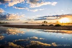 Paradisiaque... (Gabriel Lafrenire Photographe) Tags: nature soleil eau reflet paysage arbre brume matin leverdesoleil lgume rflexion rivirelalivre effetdemirroir
