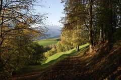 Herbstwanderung (inge.sader) Tags: trekking landscape herbst natur val landschaft alto trentino südtirol brixen bressanone adige plose eisacktal isarco