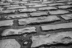 Street in Dublin (Gehmacher_Photography) Tags: street ireland bw dublin white black stone close streetphotography ground