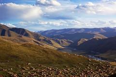 141002_SD-168 (daviddu*) Tags: sky cloud tibet 雲 天空 西藏 四川 佛學院 色達 色達喇榮五明佛學院
