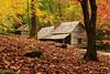 bd-7120.jpg (billdavislandscapes) Tags: fall nationalpark tennessee bldgs gsmnp oldstructures