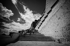 20140913-L1003083111222 (Dennis Wu6) Tags: street leica nepal 2 bw photography singapore 14 rangefinder tibet kathmandu 50 35 旅行 黑白 小印度 duba m9 人文 西藏 布达拉宫 街拍 尼泊尔 加德满都 博卡拉 大昭寺 新加坡 金沙 pokhra summcrion